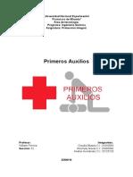 Primeros Auxilios, Proteccion Integral