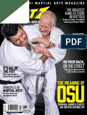 Blitz - June 2016 | Karate | Mixed Martial Arts
