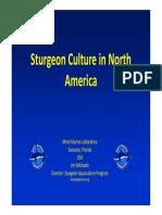 Sturgeon Culture in North America_J Michaels