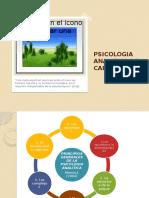 Psicologia Analitica de Jung