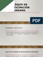 Consejos de Participación Ciudadana