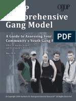 Assessment-Guide gang.pdf