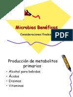 microorganismos beneficos