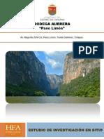 ESTUDIO DE INVESTIGACION DE SITIO PASO LIMON TUXTLA GUTIERREZ CHIAPAS.pdf