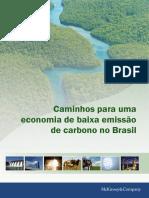 McKinsey Carbono Brasil