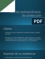 Accion Extraordinaria de Proteccion - Copia
