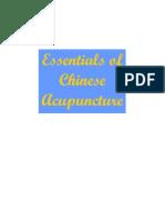 Essentials of Acupuncture.pdf
