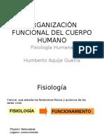 ORGANIZACIÓN-FUNCIONAL-DEL-CUERPO-HUMANO.pptx
