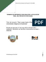 TERMINOS DE REFERENCIA PARA REALIZAR LA EVALUACION FINAL DEL PROYECTO