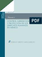 Control Jurisdiccional y Protección de Los Dh