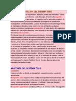 Anatomia y Fisiologia Del Sistema Oseo (1)