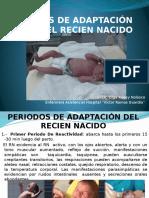 PERIODOS DE ADAPTACIÓN.pptx