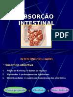 Fisio. Digestorio - Absorção