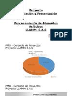 Proyecto LLAMMI