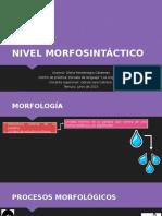 Nivel morfosintáctico presentación