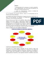 AUDITORIAS AMBIENTALES A DERRAMES DE PETROLEO
