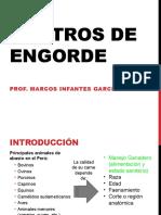 Centros de Engorde (1)