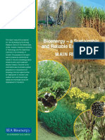 MAIN REPORT - Bioenergy - a sustainable and reliable energy source. A review of status and prospects.pdf