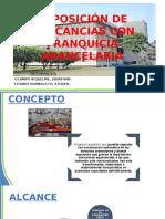 Reposicion de Mercancia Con Franquicia Arancelaria.ppt