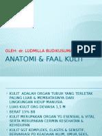 1.Anatomi & Faal Kulit