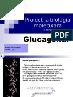 Proiect La Biologia Moleculara