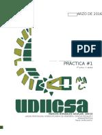 Práctica-1 Fisica para informaticos