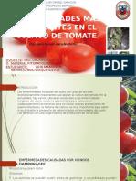 Presnt tomate.pptx