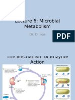 Lecture 6 Microbial Metabolism(1) (1)