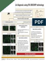 Zika-Serological Differential Diagnosis IFA-EUROIMMUN