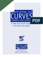 Foster_Care_Guide_complete.pdf