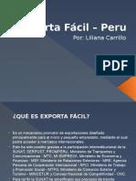 exportafacilperu-110614203013-phpapp01