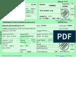 Permiso Circulacion Electronico - DCPD60-3