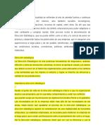 Direccion Estrategica (1)