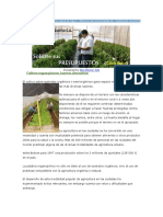 Sistemas Intensivos Para el Agro.docx
