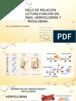 Hemoglobina Mioglobina. Seminario 1 Falta Vane y La Charlie