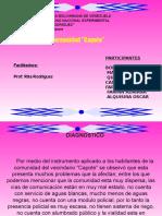 Presentacion-jornada de Saberes Rita