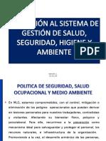 Presentacion Salud Ocupacional T_t
