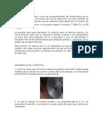 INTRODUCCION-y-DESARROLLO.docx