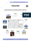 Petex PROSPER Product-Info Sep2015
