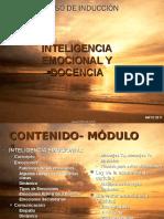 Inteligencia Emocional y Competencias Docentes