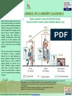 Infografia 012013 OSEL Cajamarca Anexo