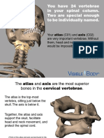 Skeleton_AtlasAxis_121613.pdf
