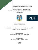 Plan de tesis en Psicología - Modelo.pdf