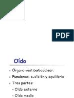 Anatomia Del Oido Presentación 1