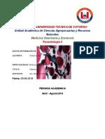 Parasitologia Heces Toro
