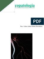 Psicopatologia UAG 2