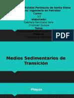 nivelacion_ medios sedimentarios de transicion.pptx