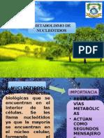 Diapositivas de Bioquimica