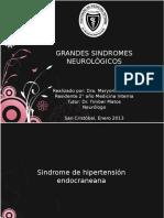 Seminario Grandes Sindromes Neurológicos