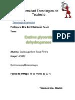enzima glicerato deshidrogenasa